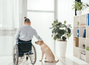 Special Disability Trusts